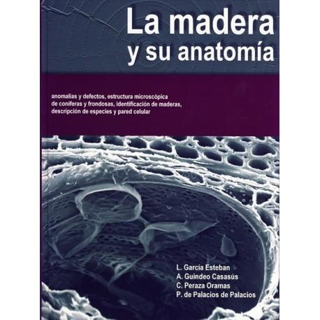 LA MADERA Y SU ANATOMIA - BelliscoVirtual